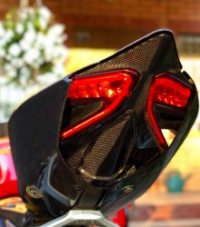 Ducati Panigale Under Tail Cover Racing (No holes)