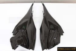 Ducati Panigale Side Panels with Engine Covers Kit