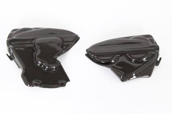 Ducati Panigale Engine Cover Side Panels